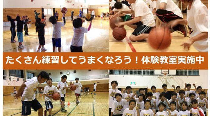 【大好評につき延長!】入会手数料0円キャンペーン♪   ダイアモンドバスケットボールスクール